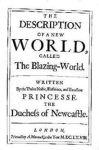 the blazing world title